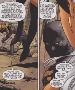 black-panther-storm