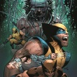 Death_of_Wolverine_4_Land_Final_Wolverine_Variant