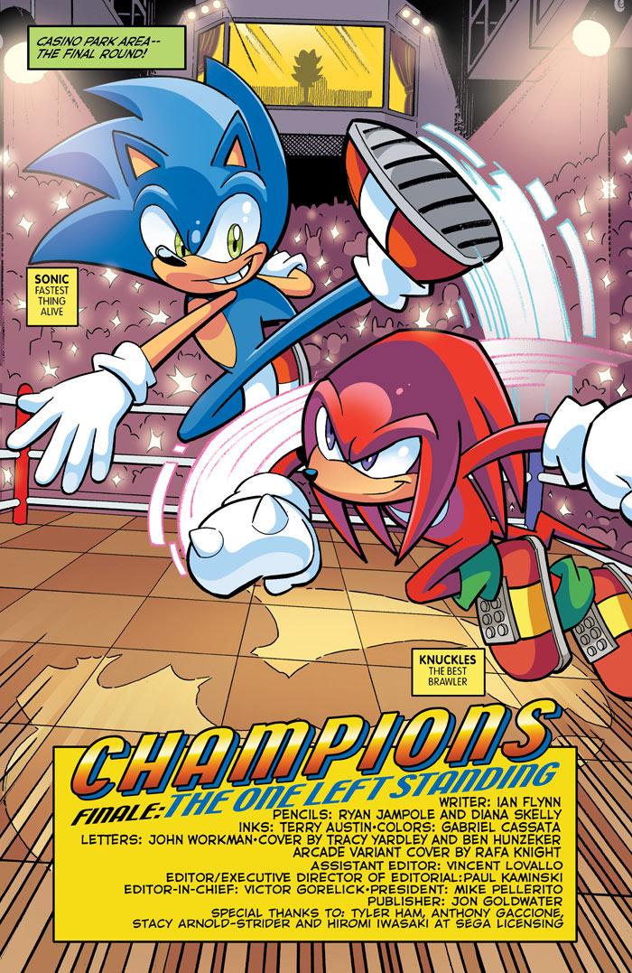 Sonic_271-3